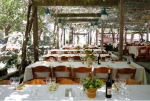 חתונה בת יער