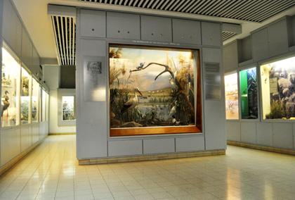 בית אוסישקין – המרכז הגלילי לטבע