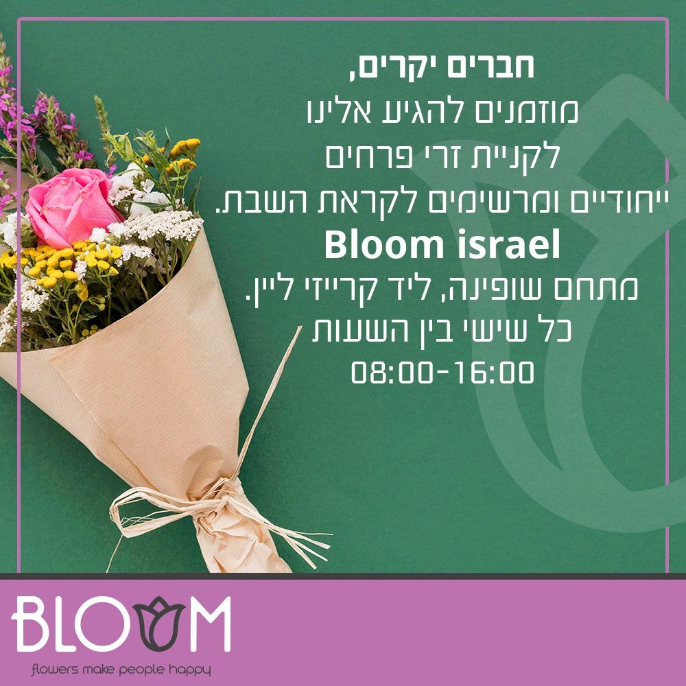 חנות פרחים ראש פינה