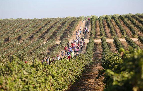 חצי מרתון הבוז׳ולה ישראל אוקטובר 2021