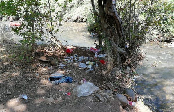 אושר החוק האוסר על הכנסת כלים חד-פעמיים לתחומי הנחלים בגליל העליון