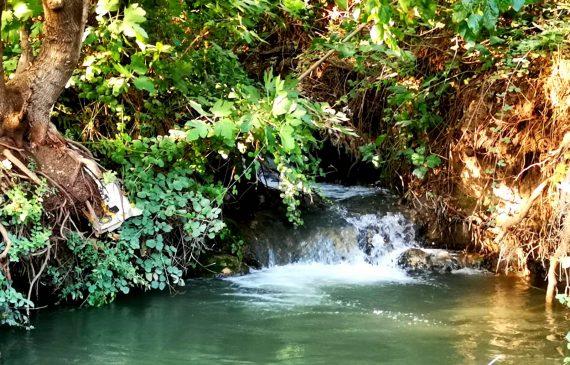 עמותת התיירות 'ארץ הגליל' וקשת יהונתן  מזמינים לסיורים מודרכים בגליל