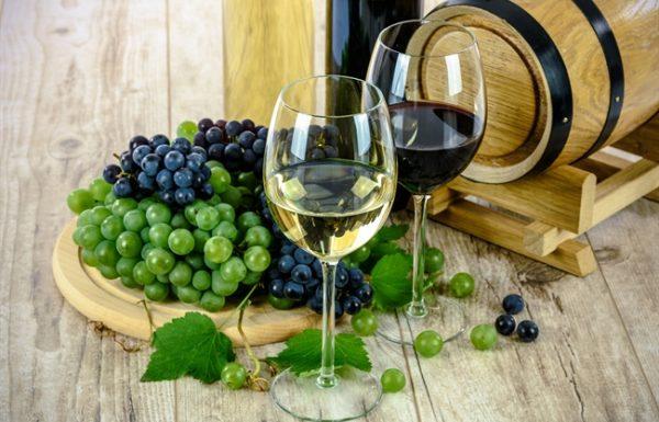 יריד היין הגלילי