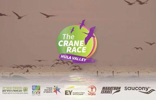 """מרוץ העגור – חברת מרתון ישראל בשיתוף אגמון החולה וקק""""ל"""