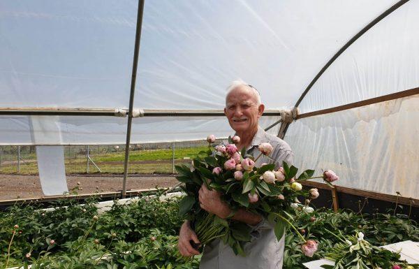 האדמונית – הפרח היוקרתי של עשירי העולם שיביא למגדלים תשואה כלכלית בתום המשבר